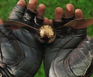 golden snitch, harry potter, and quidditch image