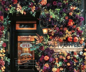 flowers and autumn image