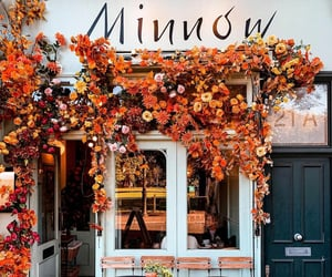 autumn, flowers, and fall decorations image