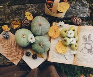 aesthetic, love, and autumn image