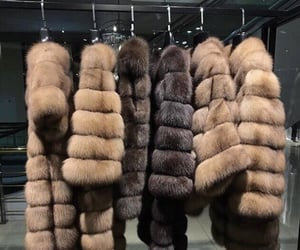 fur, luxury, and brown image