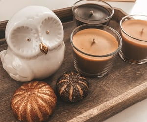 autumn, cozy, and owl image
