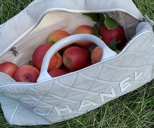 aesthetic, apples, and chanel image