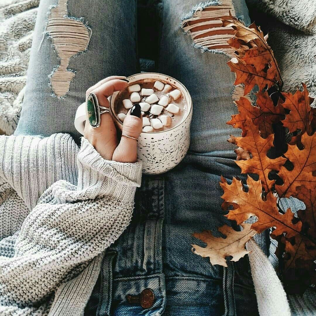 article, articles, and fall image
