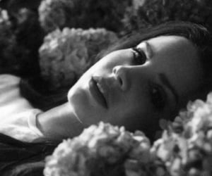 lana del rey and music image