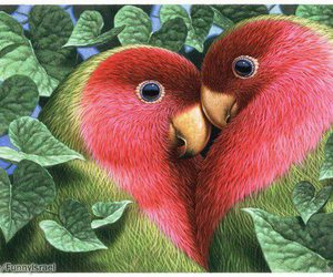 adorable, beautiful, and birds image