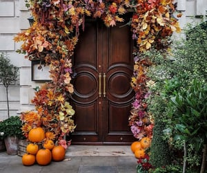 aesthetic, exterior, and fall image
