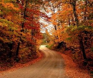 Autumn | @CelesteMF_1D