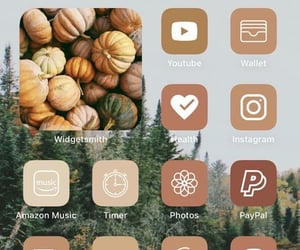 icons and ios 14 image