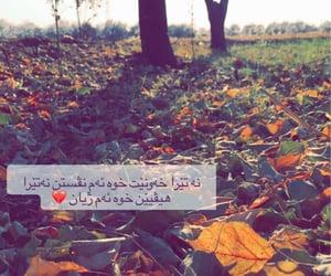 kurdistan, kurdi, and 💔 image