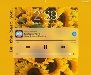 fine line, sunflower, and Harry Styles image