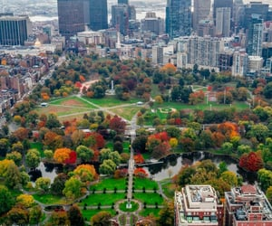 aerial photography, autumn, and cities image