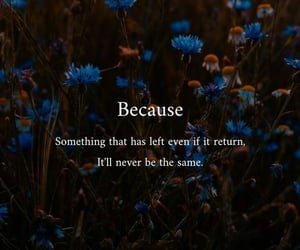 blue, quotes, and quotesoftheday image