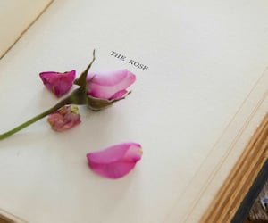 aesthetic, book, and pink image