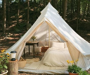 nature, tent, and good vibes image