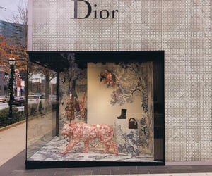 dior, fashion, and sparkle image