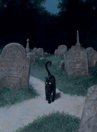 cat, cemetery, and graveyard image