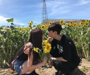 couples, sunflower, and kiss image