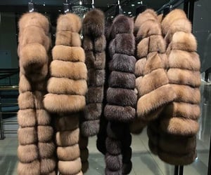 luxury, fur, and brown image
