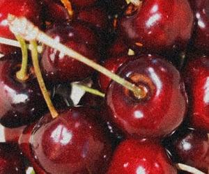 cherries, cherry tree, and fruit image