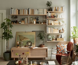 books and decor image