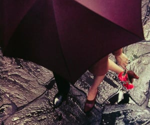 colour, photo, and saul leiter image