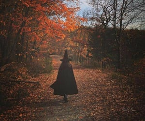 witch, autumn, and Halloween image