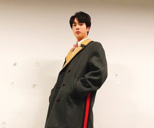 bowtie, coat, and jin image