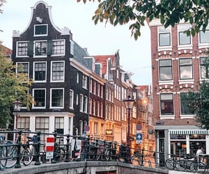 aesthetic, amsterdam, and architecture image
