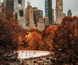 autumn, fall, and new york image