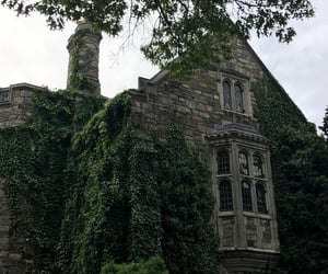 big house, ivy, and mansion image