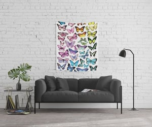 butterflies, pride, and rainbow image
