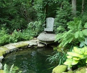 garden, pond, and nature image