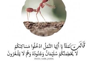 الحمد لله, تصميمي, and إسْلام image
