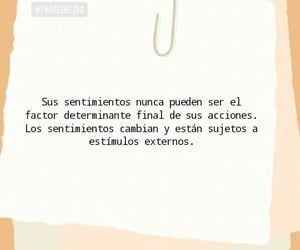 amor, vida, and frases en español image