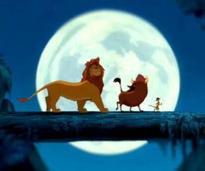 lion king, timon, and simba image
