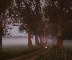 autumn, fog, and long hair image