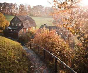 autumn, farm house, and forest image