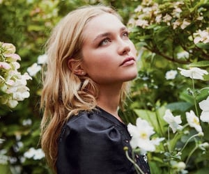 florence pugh and midsommar image