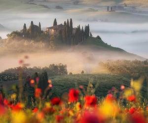 landscape and Tuscany image