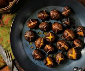 autumn and chestnuts image