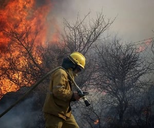 fire, firefighters, and forest image
