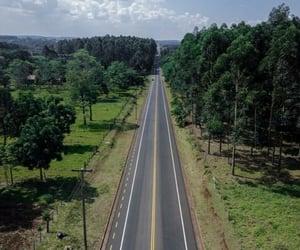 argentina, ruta, and misiones image