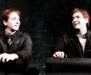 harry potter, hp, and weasley twins image