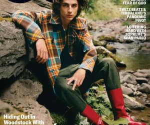 cute, call me by your name, and timothee chalamet image