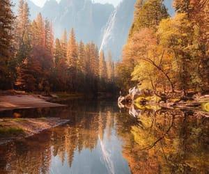 instagram, nature, and autumn image