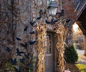 halloween porch, spooky halloween porch, and entryway decoration ideas image