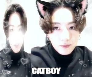 alt, meme, and catboy image