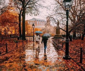 aesthetic, article, and fall image
