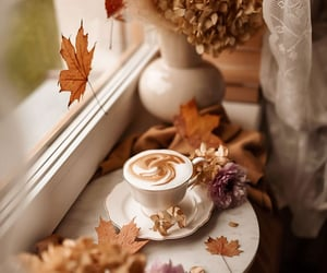coffee, drink, and fall image